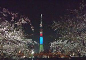 asakusa_sumidagawa_yozakura_skytree