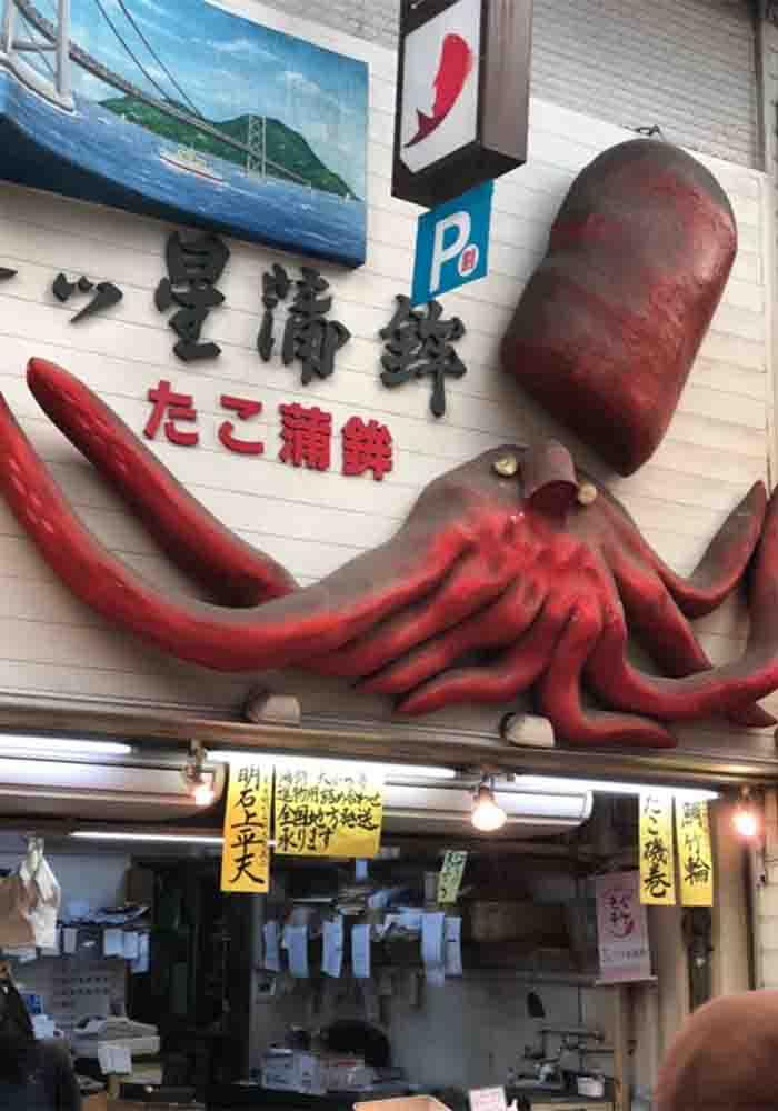 hyogo_akashi_sakananotana_takokamaboko