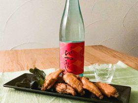 spicy-toriteba_imayotsukasa
